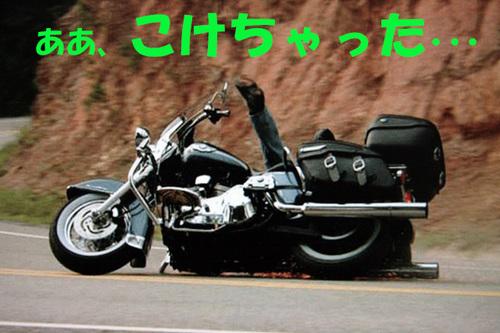 ハーレー転倒緑2.jpg